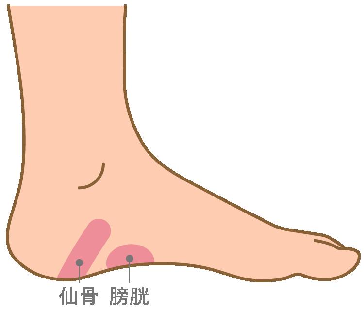 が 痛い 足 の 側面