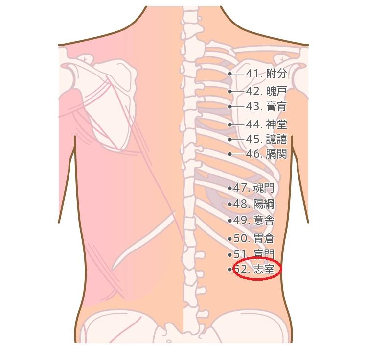 腰痛に効くツボ2
