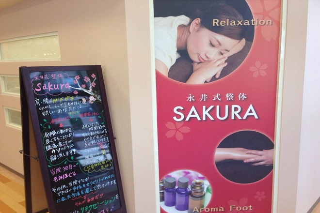 サクラ(sakura)